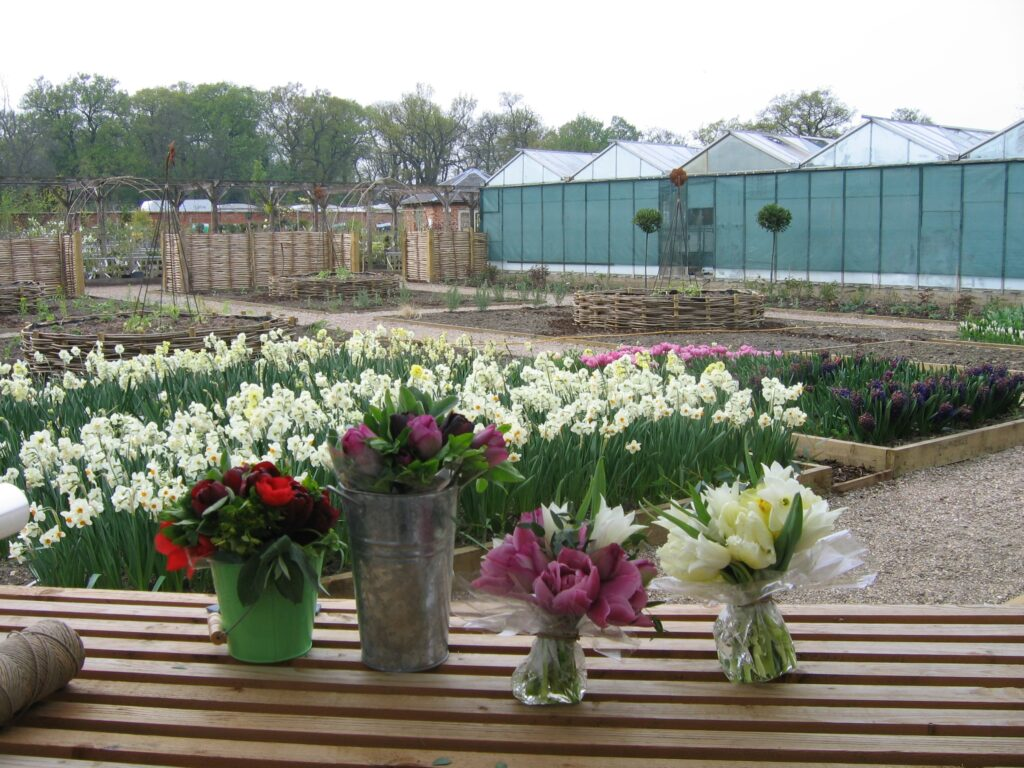 At Catkin, Rachel started out by supplying posies and bouquets to local customers - here spring posies of tulips, narcissi and anemones await delivery.
