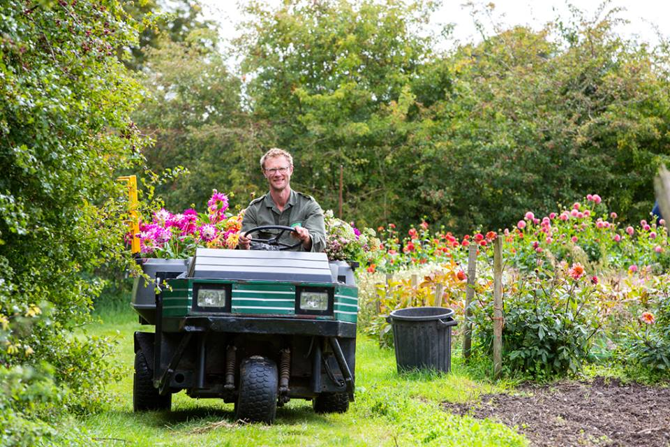 Ashley of Green and Gorgeous drives along the paths of his flower farm at Green and Gorgeous, with his trailer full of British summer cut flowers. In the cutting beds, bright dahlias tower in pinks, oranges and purples.