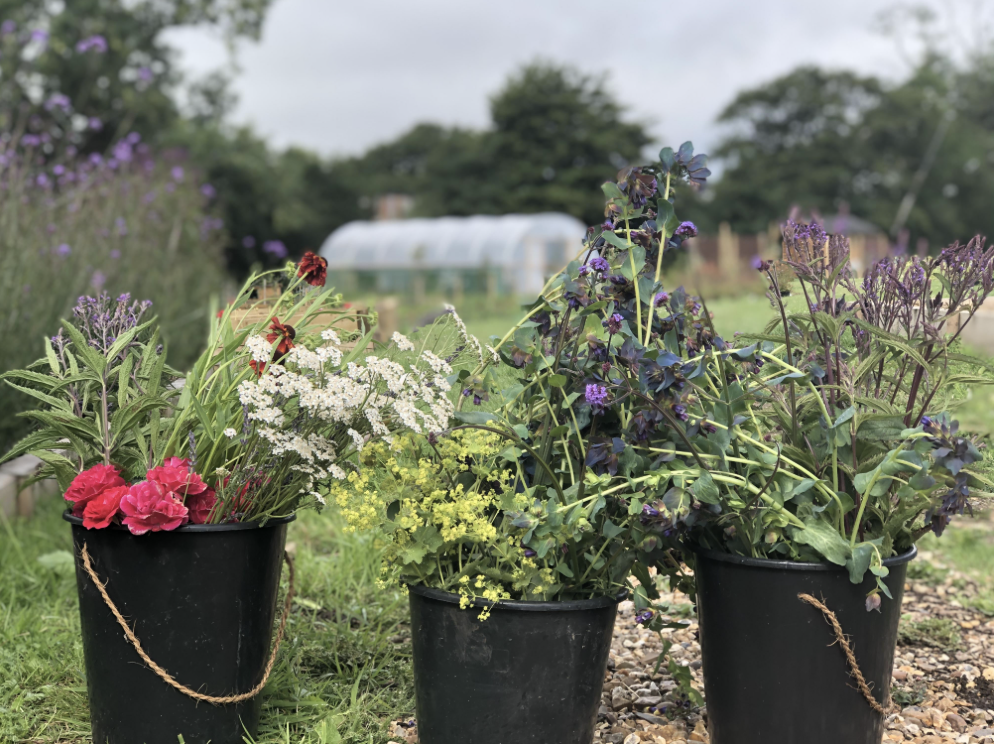 The buckets brimming with cut flowers stand in the field at Yalham Hayes Flower Farm. Seasonal blooms such as purpley coloured cerinthe, pink roses and burnt orange rudbeckias are produced in abundance.