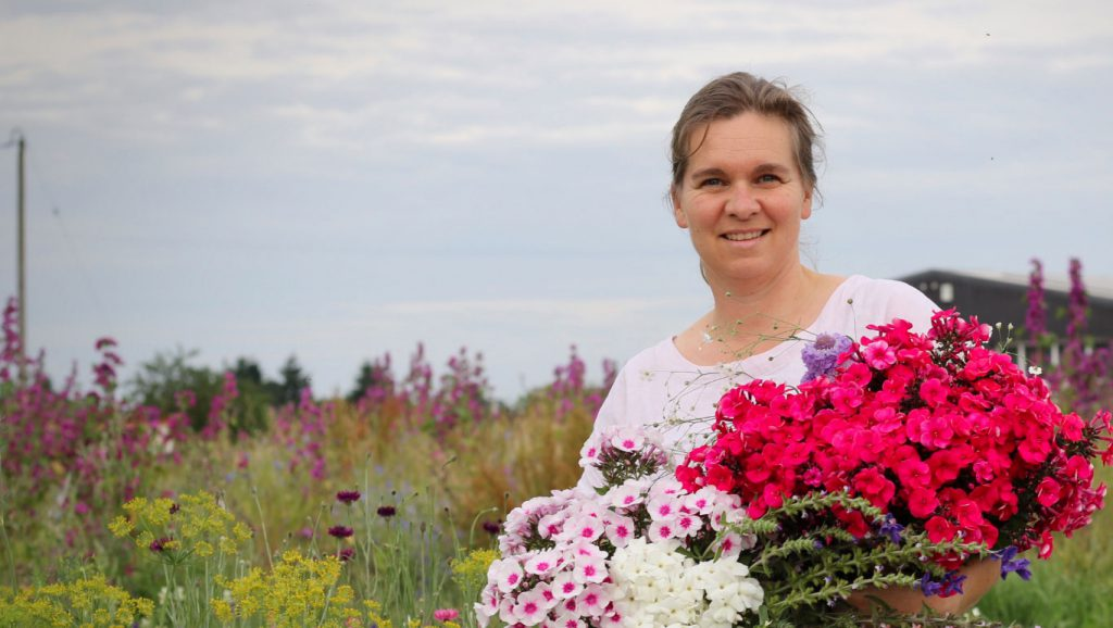 Meg of Roots Family Farm holds a freshly cut bunch of pink flowers on her flower farm