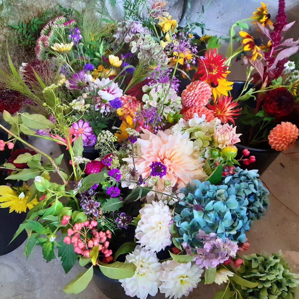 Summer Abundance from Emma Jayne's Garden