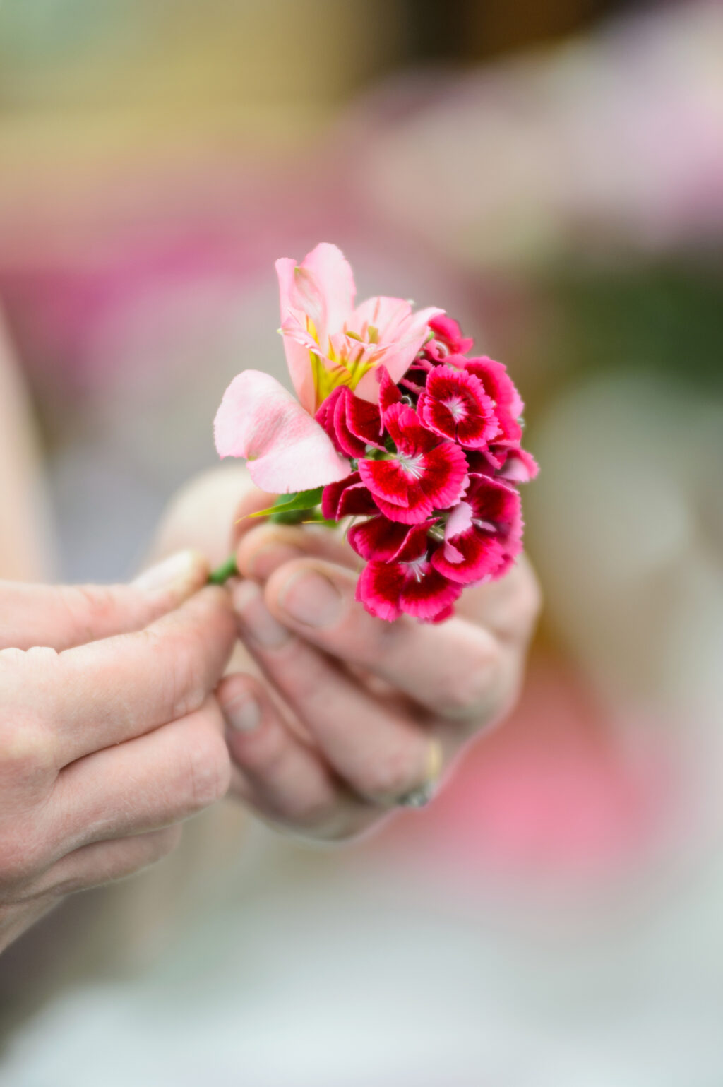 Tuckshop Flowers makes a wedding buttonhole with colourful sweet williams at BBC Gardeners' World Live. Photo: Jason Ingram