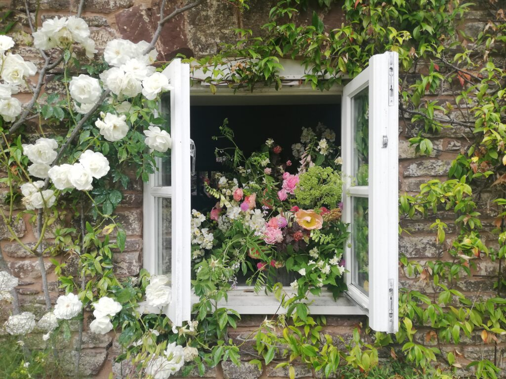 An open window in a stone farmhouse is filled with an urn of roses, foxgloves, scented jasmine trails and the pick of June's cut flowers. Photo: Farhill Flowers
