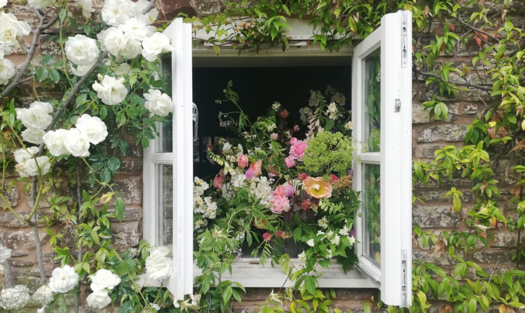 A window set in a stone wall at Farhill Flower farmis thrown open and has white scented roses scrambling around it. Inside, on the window ledge sits a large urn filled with the abundance of early summer cutting garden: foxgloves, perfumed garden roses, opium poppies, mock orange blossom, and a large textural seedhead of angelica.