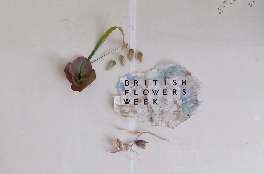 A simple graphic for British Flowers Week by floral artist Fiona Pickles of Firenza FLowers. A torn scrap of paper bears the words British Flowers Week, accompanied by a delicate stem of quaking grass, a head of plummy hellebore and underlined by a small dried fritillary.