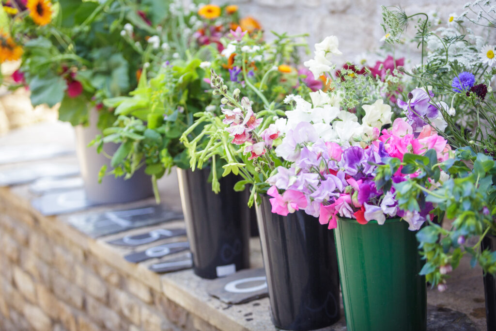 Buckets of cut flowers at Cotswold Country Flowers