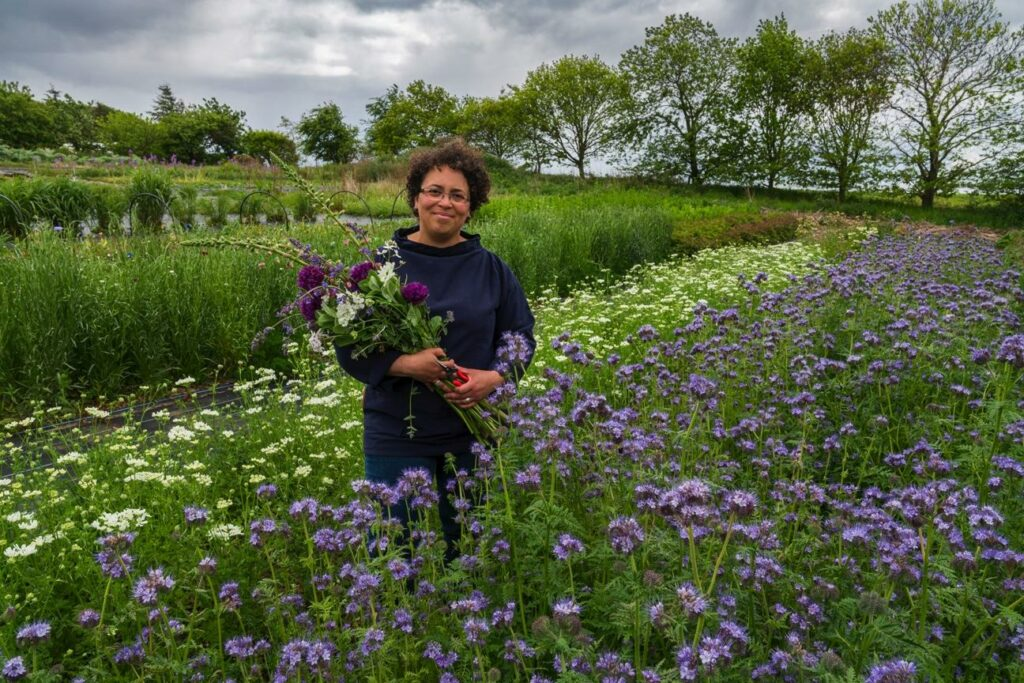 Cel Roberston of Forever Green Flower Company stands in her late spring flower field holding a bouquet of purple alliums and pink foxgloves. The beds in front of her are awash with blue phacaelia and white love in a mist.