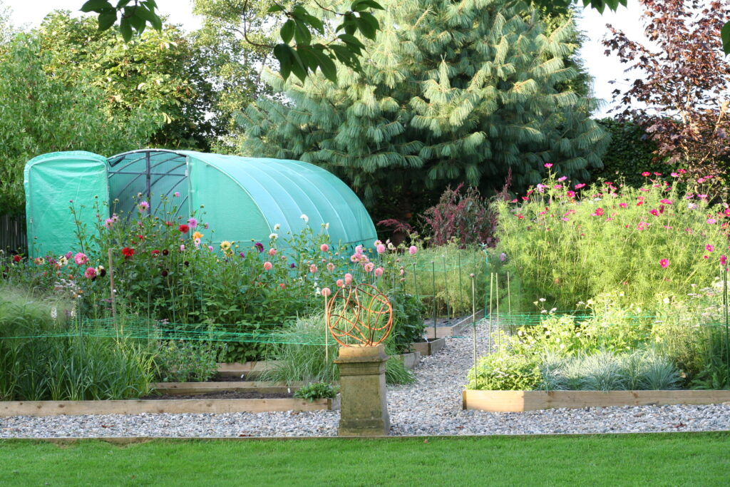 The Henthorn Farm cut flower patch in summer. Against a backdrop of mature trees, Kirsten's polytunnel nestles in the corner of the plot, with a series of raised beds, bursting with summer flowers surrounding it in the foreground.