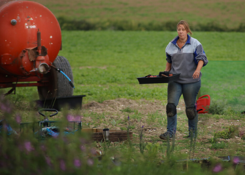Debbie of Nature's Posy works in the field at her flower farm carrying empty seed trays back to her trolley after planting out flowers in her cutting beds.