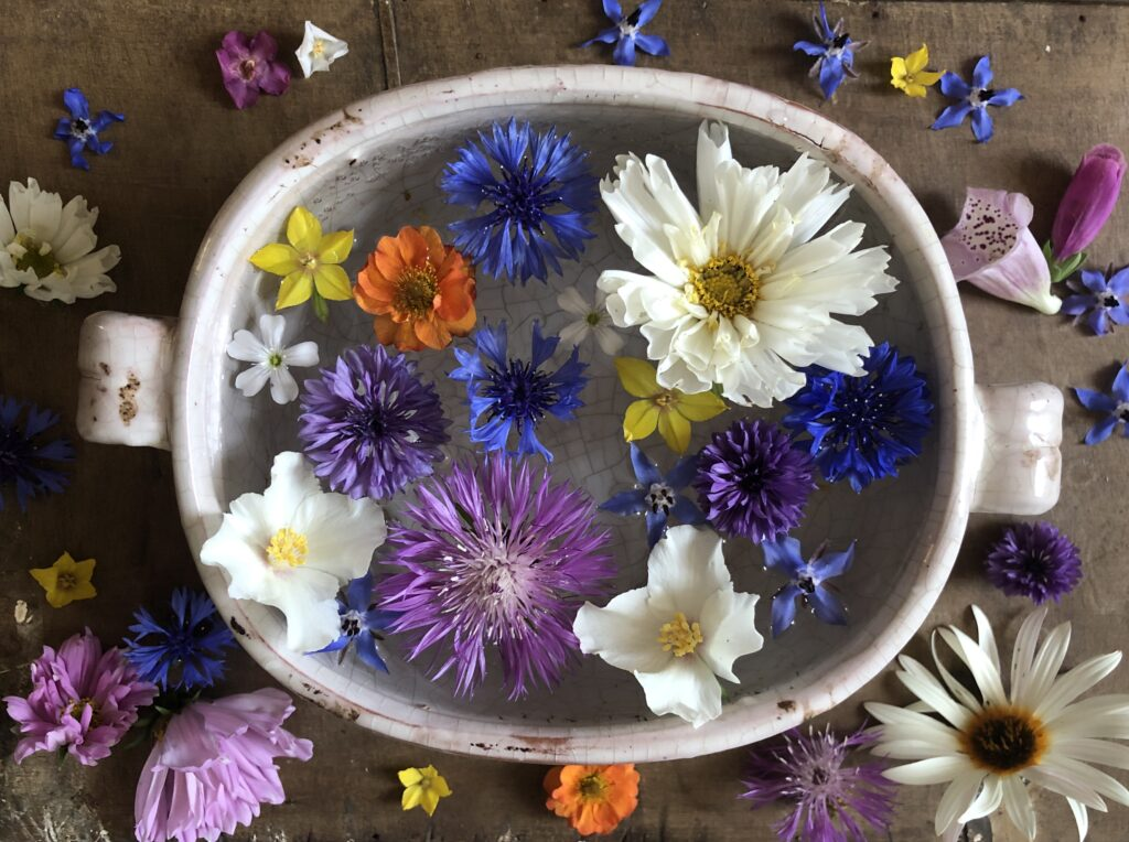 An old tureen filled with floating cut flowers in late spring by Queen of the Meadow: philadelphus, early white cosmos daisies, dog daisies, blue borage and cornflowers, yellow loosestrife and orange geums.