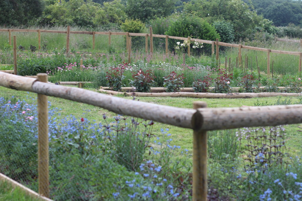 Fencing keeps deer and rabbits out of the growing area at Ravenshill Farm.