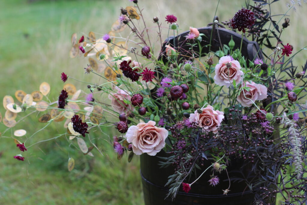 A moody toned bucket of British cut flowers at Ravensill Flower Farm holds subtle mocha roses, dark scabious and black elder leaves, the rustling seed pods of honesty and fluffy accents of grass.