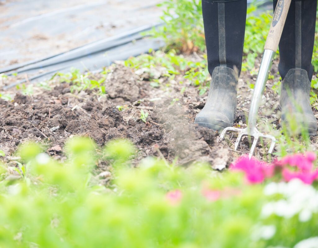 Close up of wellington boots and a fork in the soil at Tuckshop Flowers.