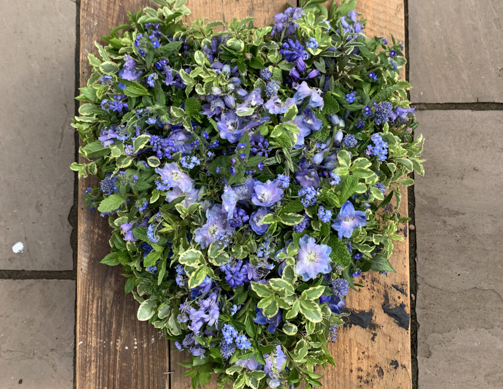 A spring funeral heart tribute with scabious, bluebells and variegated foliage by The Posy Patch