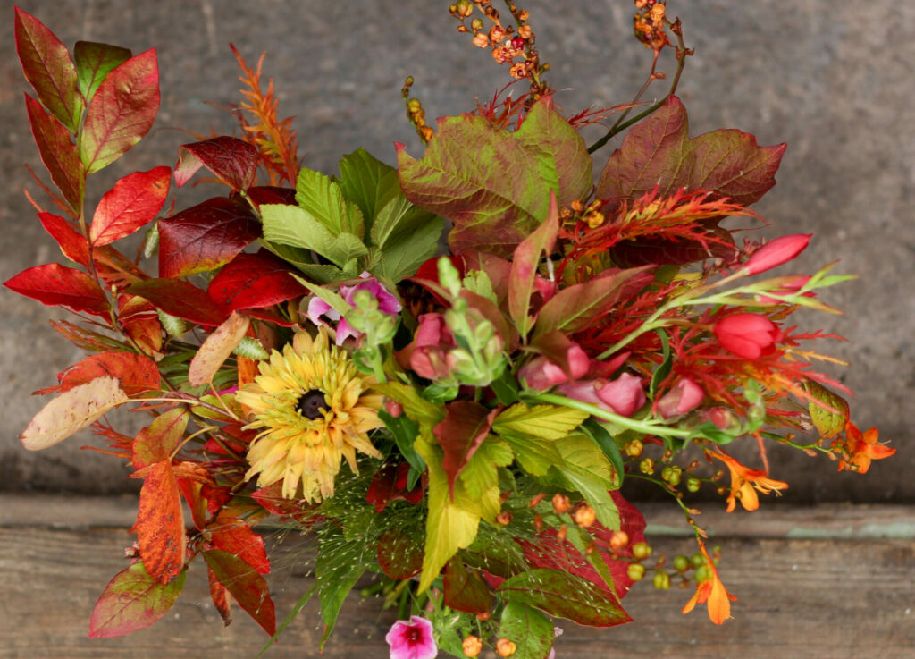 A wedding bouquet with fiery autumn leaves adding reds, yellow and bright greens to the rich yellows of rudbeckia and bright oranges of crocosmia.