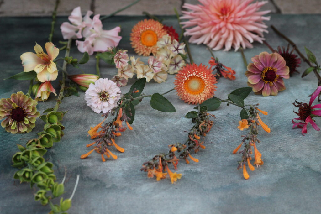Cut flowers on a workshop bench by Wildly Beautiful Flowers - find floral workshops, events and open days near you.