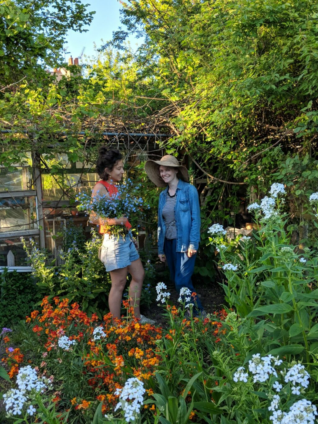 Marianne and Camila of Wolves Lane Flower Company almost lost in the abundant green growth of orange wallflowers, white sweet rocket and climbing honeysuckle all around them.
