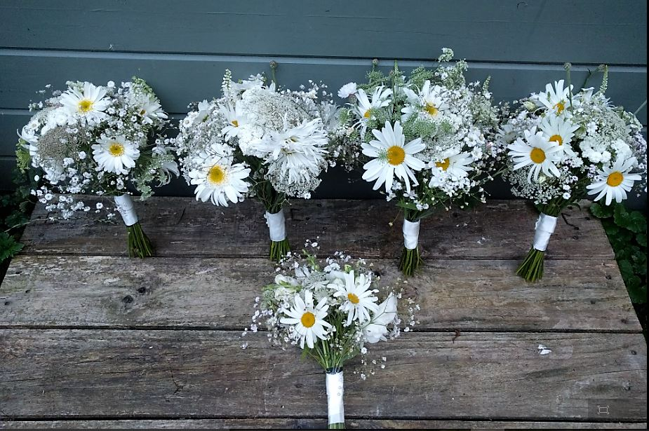 White wedding flowers all lined up on a wooden table. Camomile and Cornflowers