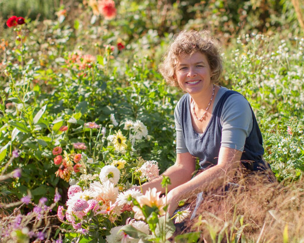 Sara Willman, My Flowerpatch