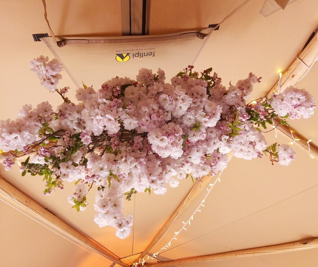 A cloud of pink blossom suspended in a wedding tipi by Camomile and Cornflowers, Worcestershire
