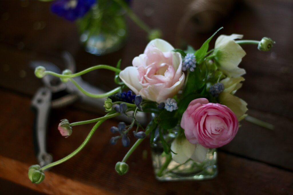 A small jar of spring flower heads - tulips and ranunuculus - sit on the table with a pair of secateurs.