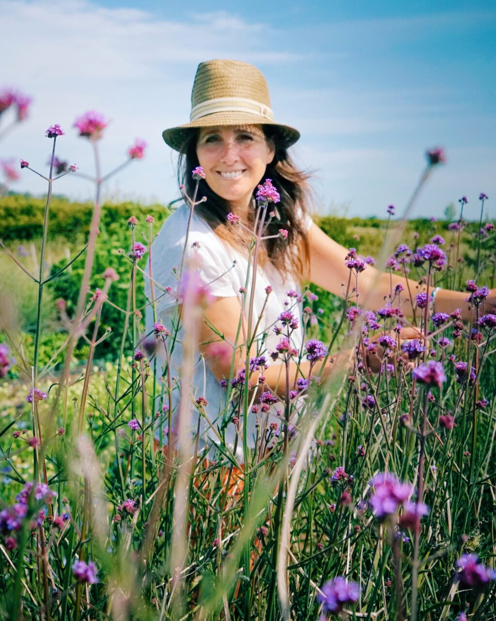 Amber Partner cutting in her flower fields at Howe Farm Flowers through a sea of purple verbena against a blue sky