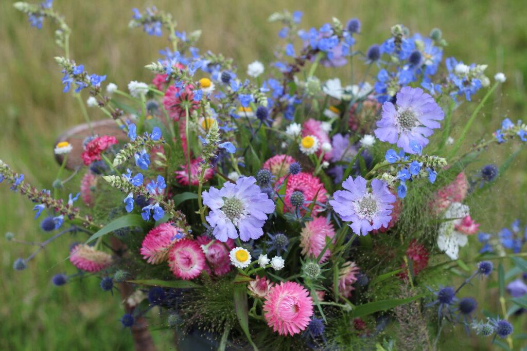 A bucket of locally grown British cut flowers by Ravenshill Flower Farm