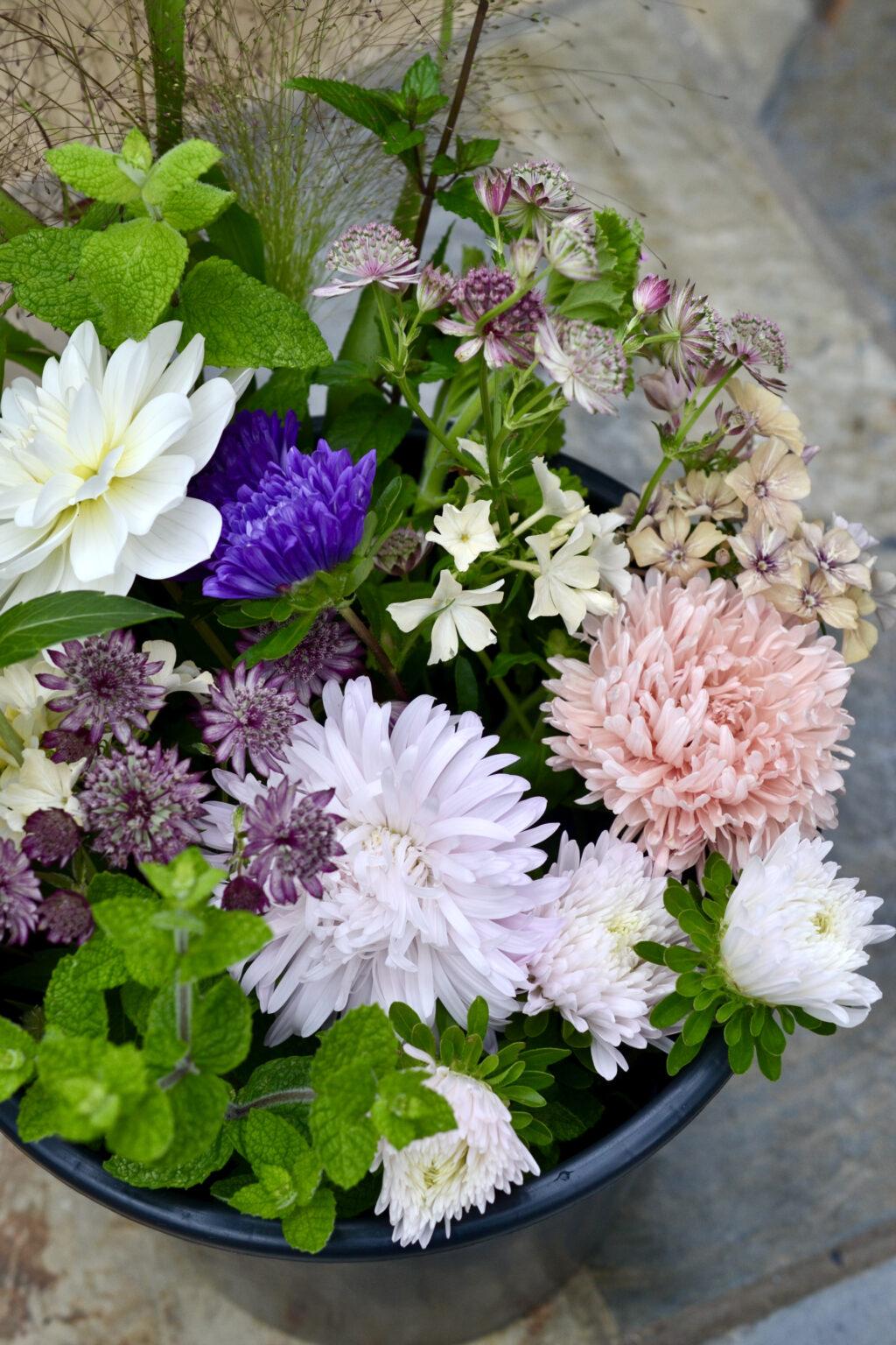 A bucket of cut flowers in August