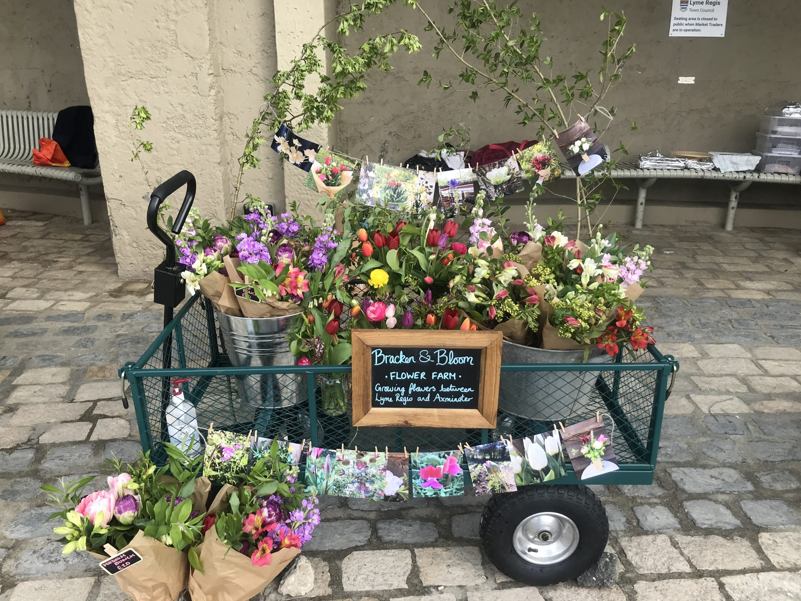 A colourful trolley-full of British spring blooms grown by Bracken & Bloom