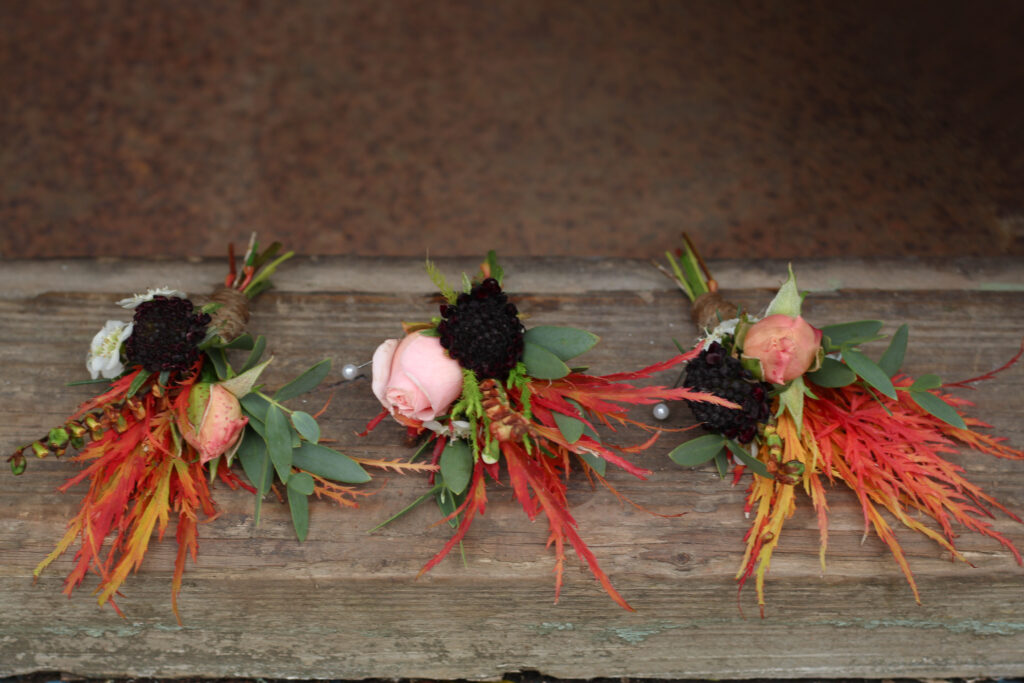 Autumn buttonholes with bright maple leaves, roses and scabious by Tuckshop Flowers, Birmingham