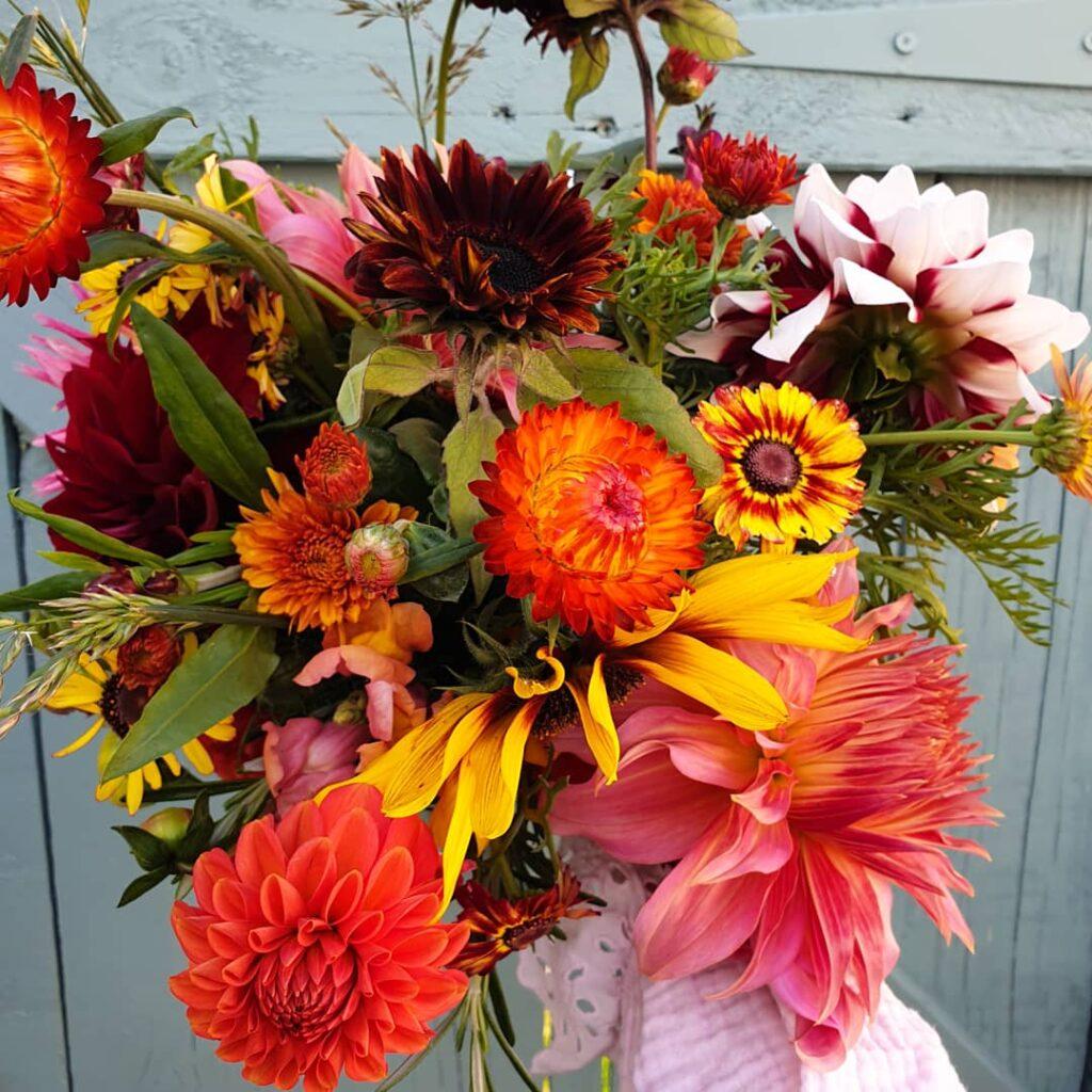 A bouquet of bright autumn colours
