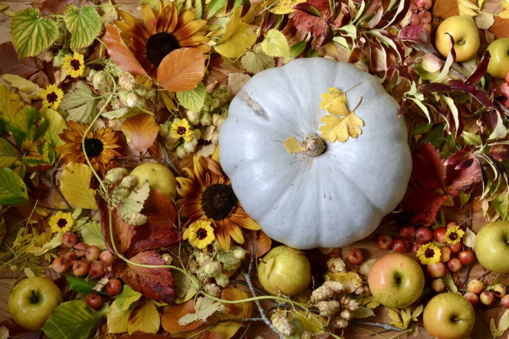 An autumnal display of cut flower heads, apples and pumpkin in russets, yellows and reds by Harebell and Bee, Gloucestershire.