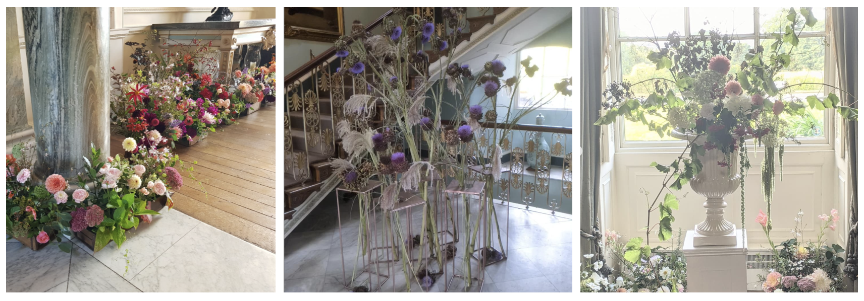 Some of the beautiful floral exhibits created by FFtF members at the Harrogate Autumn Show 2021